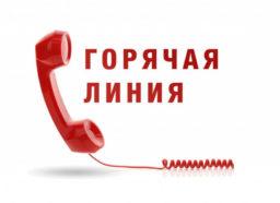 Телефон для консультации